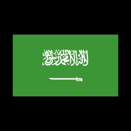 Saudi_Arabien_new.png